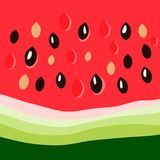 Watermelon close up. Seeds on the bright red juicy background. Pattern for textile print, menu and food posters decoration, wrapping paper, wallpaper, backdrop Stock Images