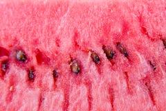 Watermelon closeup Stock Images