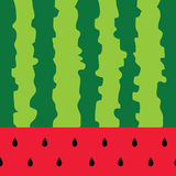 Watermelon color fruit background vector Stock Image