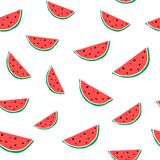 Watermelon colorful seamless pattern. Hand drawn healthy fruit. Royalty Free Stock Images