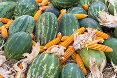 Watermelon and corn in straw Royalty Free Stock Photos