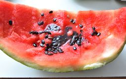 Watermelon crust with black seeds royalty free stock images