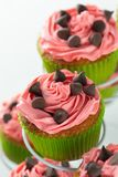 Watermelon cupcakes, pink and green with choc chips stock photos