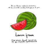 Watermelon Cut Hand Draw Logo Color Icon Set Royalty Free Stock Images