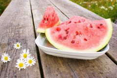 Watermelon and daisies Royalty Free Stock Image