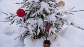 Christmas tree great outdoor stock images