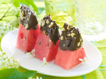 Watermelon dessert Royalty Free Stock Photos