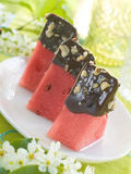 Watermelon dessert Royalty Free Stock Images