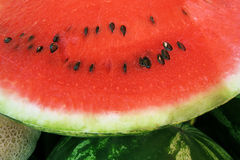 Watermelon (1) Stock Image