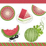 Watermelon Digital Clipart Royalty Free Stock Images