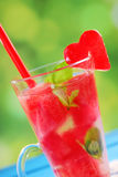 Watermelon drink with mint and ice Stock Photos