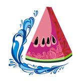 Watermelon in water Royalty Free Stock Photos