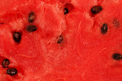 Watermelon Flesh Stock Photo