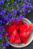 Watermelon. Fresh slices of watermelon Royalty Free Stock Photography