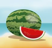 Watermelon fruit fresh harvest - beach background. Vector illustration eps 10 Stock Photography