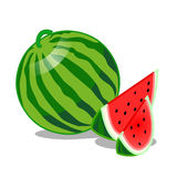 Watermelon Fruit isolated illustration Stock Image