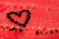 Watermelon, Fruit, Red, Pulp, Cores Stock Photos