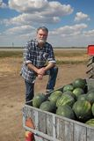 Watermelon fruit at trailer and smiling farmer. Smiling adult farmer selling watermelons at farmers market from trailer Royalty Free Stock Image