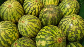 Watermelon. Fruit and vegetable shop. Watermelons Stock Photo