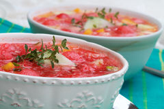 Watermelon Gazpacho Stock Photography