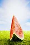 Watermelon on grass, sun and clouds, copy space Stock Image