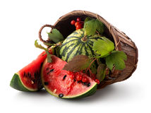 Watermelon and guelder Stock Photo