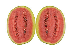 Watermelon. Half dissect of watermelon on white background Stock Photography
