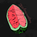 Watermelon 08 A. Hand Drawn Watermelon image. Vector illustration on a dark grey textured background. Unique artistic concept in red, pink, green and grey Stock Image