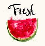The watermelon Royalty Free Stock Photo
