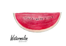 Watermelon.Hand drawn watercolor painting on white background Stock Photos
