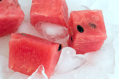 Watermelon and ice Royalty Free Stock Photo