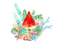 Watermelon ice cream.Plumeria flowers,monstera,shell, coral, starfish and floral. stock illustration