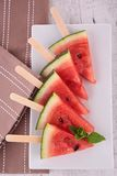Watermelon ice cream Royalty Free Stock Photos