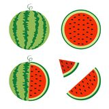 Watermelon icon set. Whole ripe green stem. Slice cut half seeds. Triangle. Green Red round fruit berry flesh peel. Healthy food. Sweet water melon. Tropical Stock Image