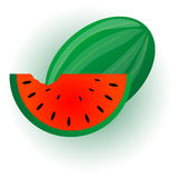 Watermelon illustration. Royalty Free Stock Image