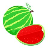 Watermelon illustration Stock Images