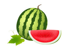 Watermelon. Illustration of juicy water melon kept on white isolated background Stock Photo