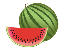 Watermelon. Illustration of a watermelon and slice isolated on white background Royalty Free Stock Photos