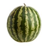 Watermelon isolated Stock Photography