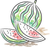 Watermelon. Isolated illustrated clip art image Stock Photo