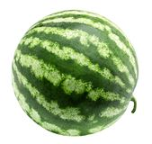 Watermelon isolated on a white background Stock Images