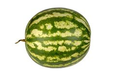 Watermelon isolated on white background Stock Image