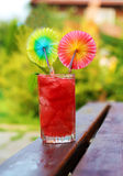 Watermelon juice for health Royalty Free Stock Image