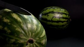 Watermelon with knife and black background. Super slow motion. Two fresh striped green huge big tasty watermelons at black surface and bakground. near Watermelon stock video