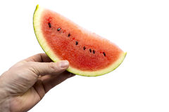 Watermelon. Male hand with a watermelon, isolated on white Royalty Free Stock Photo