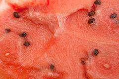 Watermelon with many seeds Royalty Free Stock Image