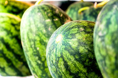 Watermelon at the market for sell. Close up watermelon at the market for sell Royalty Free Stock Image