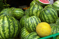 Watermelon and melon. Stock Image