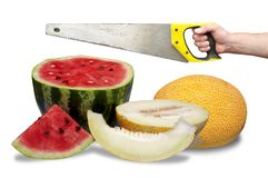 Watermelon and melon and hand with hacksaw Royalty Free Stock Photo