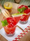 Watermelon mojito Stock Images